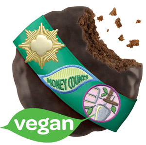 thin_mints_vegan_sash_web